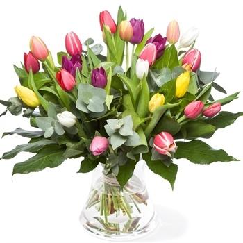 Bont boeket van verschillende soorten tulpen
